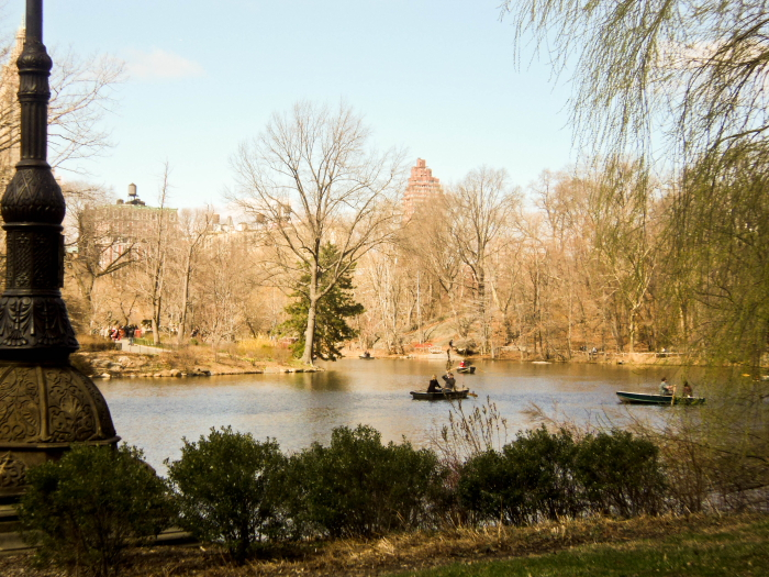 Boats on a lake in Central Park, New York