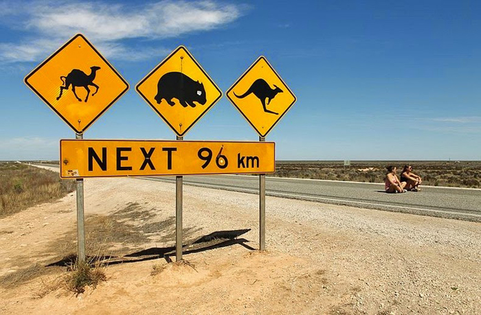 Post image for 10 Ideas for Road Tripping in Australia