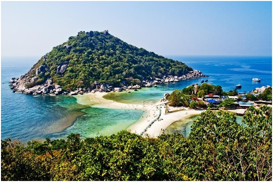 Post image for Why Choose Koh Tao for Diving?